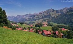 "SF_19A_00054 - View on the small town of ""Les Sciernes d'Albeuve"", Gruyère region - Switzerland (Valentin Vuichard) Tags: valentin vuichard valentinvuichard vv gruyère greyerz fribourg freiburg freiburger fribourgeoises suisse schweiz switzerland préalpes alps alpen mountain mountains berg bergen montagne montagnes prealps voralp voralpen préalpe alpage alpestre paysage country landschaft landscape landwirtschaft canon eos 300v ""canon 300v"" rebel ti"" intyamon lintyamon lessciernesdalbeuve hautintyamon"