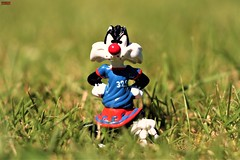 number 329 (notatoy) Tags: looney tunes footballfever smileonsaturday football kinder surprise sylvester tweety
