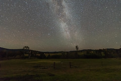 The Milky Way and Rural Landscape (Merrillie) Tags: night glitter landscape milkyway astrophotography stars rural newsouthwales astro paddock nightsky country astronomy outside astrology tree gresford winter nsw sky outdoors australia