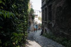lush (o altan) Tags: karakoy istanbul turkey türkiye oaltan street urban cobblestone