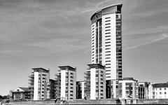 Swansea apartments (Rob A Dickinson) Tags: nikon d7100 nikkor24120mmf4 blackandwhite monochrome building apartments tower block