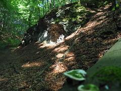 Erosion (michaelmueller410) Tags: stones rocks rock felsen steine laub wald forest trees bäume sommer hohenstein woods natur nature