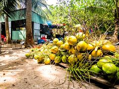 Hon May Rut, Phu Quoc, Vietnam (Kevin R Thornton) Tags: honmayrut galaxys8 asia travel mobile samsung vietnam coconut phuquoc thànhphốphúquốc tỉnhkiêngiang vn