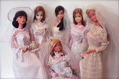 Bridal Beauties (DeanReen) Tags: barbie beautiful bride superstar bridal steffie oriental miko kira stacey malibu pink skin standard strawberry blonde brunette titan redhead peaches cream european exclusive 1980 1985 1983 80 85 83 1974 74 1971 71 best buy fashion tracy get ups n go guag 7176 wedding belle designer originals 2300 1972 72 1978 78 8623 7839