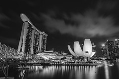 Black and White (Rapufro) Tags: black white singapore marina bay sands artscience museum helix bridge monochrome water sky people architecture
