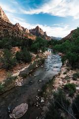 Zion 2018-098_ILCE-7RM3-18 mm-180529_180529-ILCE-7RM3-18 mm-181938__STA5328 (Staufhammer) Tags: sony sonya7riii a7riii sonyalpha sony1635mmf28gm sony1635mm sonygm sony85mmf18 zion nationalparks nationalpark zionnationalpark grandcanyon landscape alphashooters travel valley fire state park valleyoffire valleyoffirestatepark