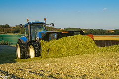 Corn Silage 2018 (martin_king.photo) Tags: mais corn cornsilage maisfeber 2018harvestseason summerwork powerfull martin king photo machines strong agricultural greatday great czechrepublic welovefarming agriculturalmachinery farm workday working modernagriculture landwirtschaft martinkingphoto machine machinery field huge big sky agriculture tschechische republik power dynastyphotography lukaskralphotocz day fans work place wheels maize silo silage
