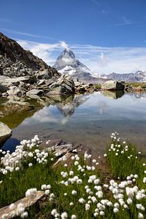 gespiegeltes Matterhorn