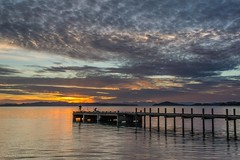 Catch of the Day (Antony Eley) Tags: wharf jetty fishermen dawn sunrise cloud colour landscape auckland