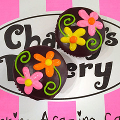Spring cupcakes dipped in chocolate ganache with piped daisies on stems (Charly's Bakery) Tags: charlys charlysbakery charliesbakery charleysbakery bakerycapetown cakecapetown cupcake cupcakescapetown customcakecapetown muckingafazing spring