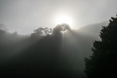 Auckland, NZ fog, One Tree Hill June 2018 (bishop.mark95) Tags: auckland fog newzealand