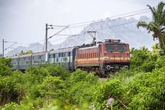 Gurudev Express ! (Karthik Abbilash) Tags: indianrailways india erode ed wap4 ncj shm nagercoil shalimar train transport loco locomotive canon dslr tamilnadu monsoon