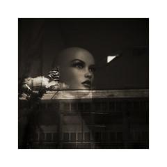 The flag (giovdim) Tags: mannequin vitrine reflection flag greece giovis monochrome sepia cloud distopian glass doll portrait waving mood dark βιτρίνα αντικατοπτρισμόσ δυστοπία ελλάδα σημαία