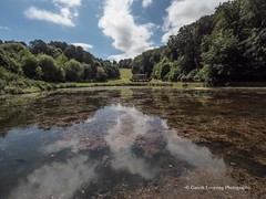 Bath Prior Park Lakes 2018 08 02 #10 (Gareth Lovering Photography 5,000,061) Tags: bath prior park nationaltrust gardens palladian bridge serpentine lakes viewpoint england olympus penf 14150mm 918mm garethloveringphotography