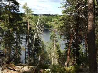 Lake Urja (Nuuksio national park, Espoo, 20180623)