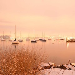 A cold winter day... (pier1091) Tags: winter switzerland lucerne longexposure longlightexposure snow lake boat lights