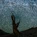 Perseid Metors and Star Trails
