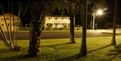 From amongst the trees (spelio) Tags: ballina night walk photos a6000 may 2018 nsw australia
