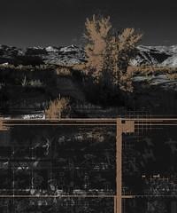 Vally floor (Vincent Mattina (aka FLUX)) Tags: landscape copper photo trees mountain time underground pictoglyphs blackwhite digital