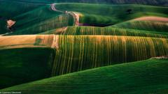 Armonia (SDB79) Tags: campagna molise ururi grano verde colline