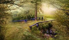 Moody summer morning. (BirgittaSjostedt) Tags: brige stone stonevault grass fence rural drkness outdoor nature landscape scene sweden texture haze fog mood atmosphere birgittasjostedt