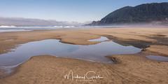 Manzanita Tide Pools (NikonDigifan) Tags: manzanitaoregon oregon oregoncoast pacificnorthwest pacificocean pacificcoast tidepool beach summer nikond750 nikon28300 nikon mikegassphotography