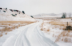 wyoming winter, part five (manyfires) Tags: wyoming rural farm ranch roadtrip winter snow cold nikonf100 35mm analog film road drive driving mountains landscape