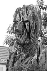 Skulpturen von Andreas Kuhnlein (jazzfoto.at) Tags: andreaskuhnlein skulptur skulpturen holzskulptur holzskulpturen kunst ausstellung skulpturenausstellung aldersbach klosteraldersbach bildhauer motorsäge totholz zerklüfteteoberfläche hartholz ulme eiche esche markuslackinger sony sonyalpha sonyalpha77ii alpha77ii sonya77m2 portrait retrato portret sw bw schwarzweiss blackandwhite blackwhite noirblanc bianconero biancoenero blancoynegro zwartwit pretoebranco bayern bavaria deutschland germany