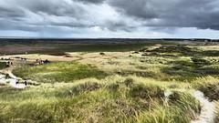 Wind (Cydracor) Tags: tidelands tideland mudflat dunes dune noorsaarep norddorf panasonictz71 panasonic tz71 lumixtz71 lumix cydracor uthlande wattenmeer watt dünen düne odde northsea nordsee oomram amrum