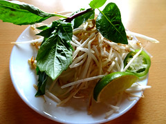 White and Green (knightbefore_99) Tags: lunch food vietnam vietnamese pho fusion asian vancouver eastvan dundas eatdrinks basil sprouts bean green white plate
