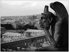 Gargoyle (Claude M.D.) Tags: gargoyle estatua statua statue ancient old paris notredame horror magic magical viejo antiguo mystery mysterious misterioso mistero oldfashioned extrano rare parigi blackandwhite bw blackwhite eglise religion religione bn biancoenero blancoynegro blancetnoire blanc noire bnw
