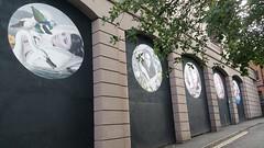 Alexandra Gallagher Street Art (koothenholly) Tags: alexandragallagher bow blackburn lancashire streetart