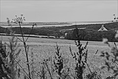 River Humber  Monochrome (brianarchie65) Tags: swanland spires church ducks water pond quarry gate lapollution canoneos600d geotagged brianarchie65 blackandwhite blackandwhitephotos blackandwhitephoto blackandwhitephotography blackwhite123 blackwhiterealms flickrunofficial flickr flickrcentral flickrinternational flickruk ukflickr yorkshirecameraramblers unlimitedphotos ngc eastyorkshire eastridingofyorkshire monochrome