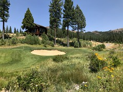 Grizzly Ranch Golf Club (The VIKINGS are Coming!) Tags: golf sierras highelevation luxury nakedbeauty wolves bare bears coyote