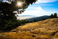 (kayters) Tags: kaytedolmatchphotography kathleendolmatch mttamalpias mttam sunset mountains fog landscape explore marinheadlands millvalley bayarea canon california northerncalifornia sunrays fence peaceful view summer july