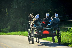 (bluebird87) Tags: amish girls women wagon horse nikon d7200