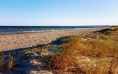 (Almusaiti) Tags: playadelagola santapola alicante alacant comunitatvalenciana comunidadvalenciana españa almusaiti samsunggalaxys7 playa platja beach spain