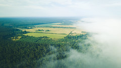 Jurkalne& Kolka 2018 (Raimond Klavins | Artmif.lv) Tags: aerial aerialview airvideo baltic balticsea bay beach blue cape capekolka cloud deep drone europe forest green gulf high kolka landmark landscape latvia mavic nature outdoor panorama park pine reflection river rock romantic sand scandinavian sea seaside shore sliterenationalpark summer travel tree vacation view water wild fog misty jurkalne koka ventspilsmunicipality lv