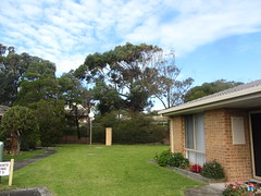 Mum's house, July 2018, grounds of the village (d.kevan) Tags: houses grass plants trees victoria windows flowers streetlamps seaford