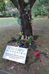 7th August 2018 (themostinept) Tags: memorial hiroshima london bloomsbury euston camden wc1 cnd tavistocksquaregardens tree paperchains flowers bouquets tributes