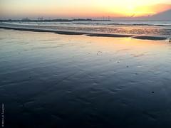 IMG_5266.jpg (wim_tavernier) Tags: westvlaanderen flanders northsea europe belgischekust belgium flandern flandre merdunord noordzee vlaanderen knokkeheist belgië be