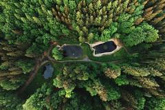 Schwanenweiher (Michal Jeska) Tags: schwanenweiher schloss karlsberg homburg saar saarland weiher wald forest dji spark drone drohne aerial