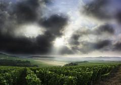 Morning dreams (ZeGaby) Tags: champagne clouds exposureblending landscape marne naturephotography pentax2470mm pentaxk1 vignes vignobles vineyards sunrise paysagesdechampagne avenayvaldor grandest france fr