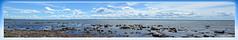 Viken in Skåne with Denmark in background (9) (andantheandanthe) Tags: skåne sweden schweden höganäs höganäskusten coast coastline june midsummer kullabygden denmark water sea öresund viken stones