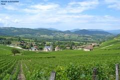 Vu depuis le gîte ! (Monde-Auto Passion Photos) Tags: landscape vigne vignoble france jongieux savoie alpes