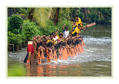Disturbing the birds! (JohnKuriyan) Tags: kerala india snakeboatrace kottayam