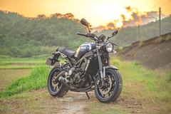 俺 の XSR900 - 30 (Cheng-Xun Yang) Tags: xsr900 yamaha xsr mtm850 バイク ヤマハ motorcycles