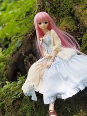 P8131726 (ranbutan) Tags: dd doll dollfiedream luka
