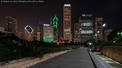 Lurie Garden Skyline View (20180811-DSC07813) (Michael.Lee.Pics.NYC) Tags: chicago luriegarden millenniumpark pritzkerpavilion garden park night longexposure architecture cityscape skyline sony a7rm2 voigtlanderheliar15mmf45
