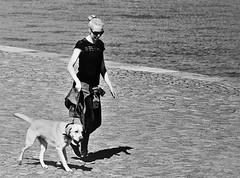 IMG_0205 (www.ilkkajukarainen.fi) Tags: helsinki dog koira ulkoilutus suomi finland eu europa scandinavia visit happy life travel traveling kauppatori salutorget market square sea meri blackandwhite mustavalkoinen monochrome katajanokka